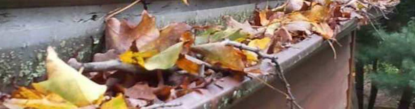 Canalones atascados llenos de hojas